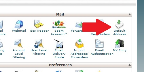 Open the Default Address page from within cPanel.